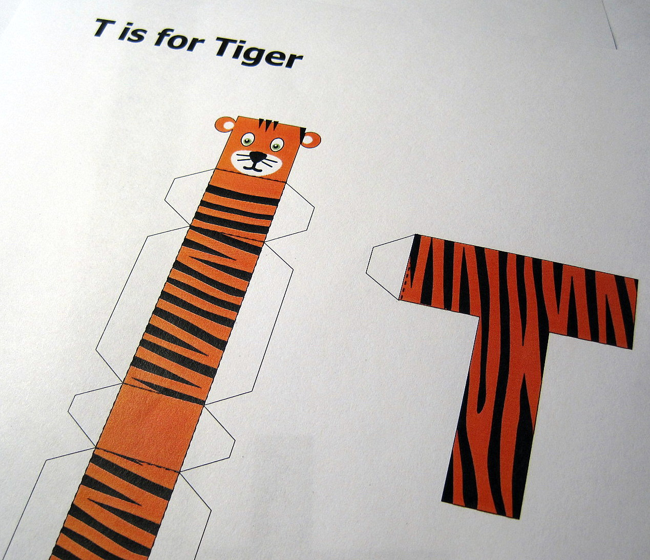T Is For Tiger C Craft