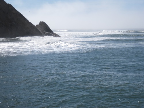 Waves at Arena Cove