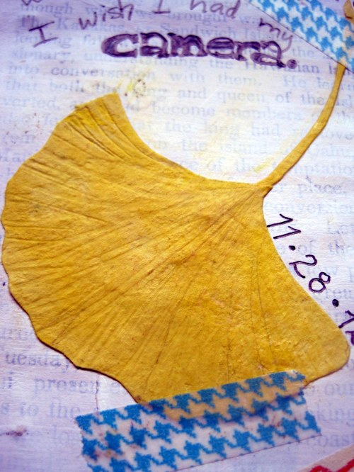 Gingko Leaf (of paper)