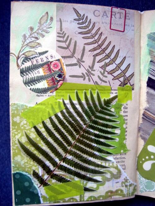 Green Fern Page