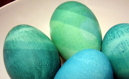 Blue & Green Eggs