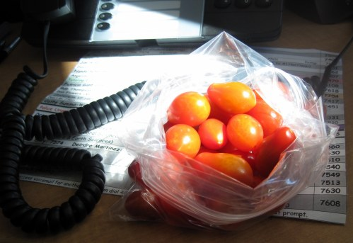 Cherry Tomatoes - snack
