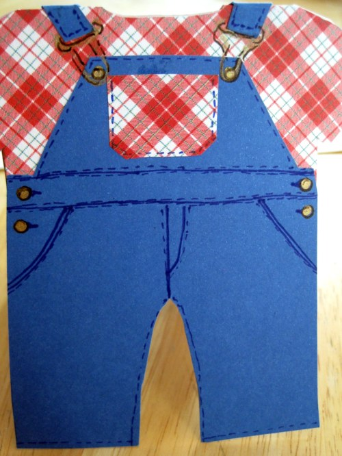 Closeup Front of Overalls