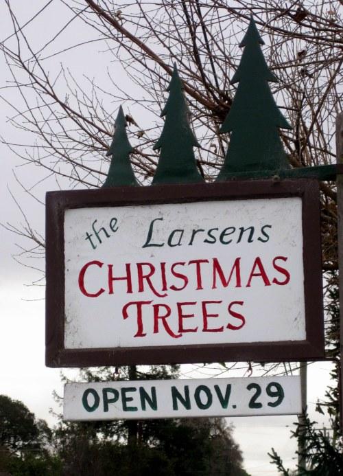 Larsens