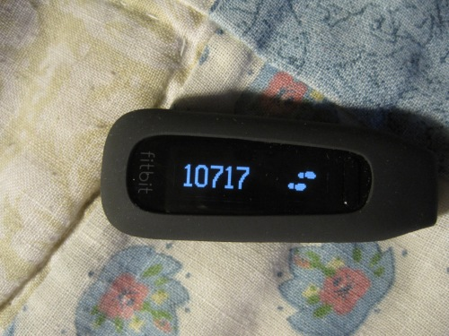 10,000 + Steps