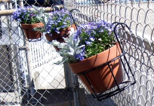 Pots on Fence close up