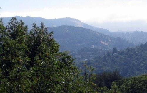 San Rafael Towers