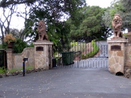 Lion Entry