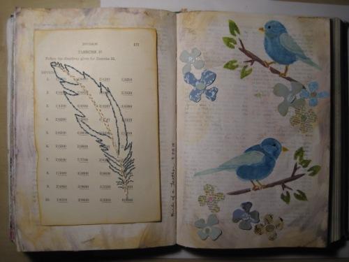 Feather + Birds