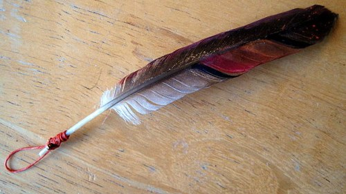 feather with loop